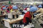 Dệt may Việt Nam tìm kiếm cơ hội tăng cường thâm nhập thị trường Nga