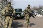 Tổng thống Nga và Pháp kêu gọi thiết lập quy chế đặc biệt cho miền Đông Ukraine