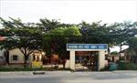 Bộ Giáo dục và Đào tạo yêu cầu xác minh việc cô giáo đánh học sinh tiểu học ở Long An
