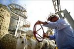 Giá dầu châu Á nhích lên do Mỹ thu hẹp khai thác