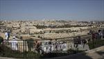 Liên đoàn Arab lên tiếng sau tuyên bố 'nhạy cảm' của Australia, Brazil về Jerusalem