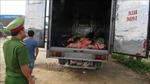 Chặn vụ thẩm lậu 1,4 tấn da và mỡ động vật hôi thối vào TP Hồ Chí Minh