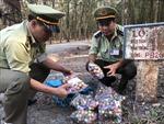 Pháo nổ ồ ạt nhập lậu qua biên giới Bình Phước