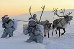 Đại chiến Bắc Cực – Kịch bản nào có thể xảy ra