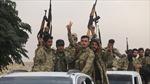 Đạt được thỏa thuận ngừng bắn tại Bắc Syria