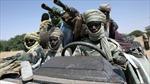 Trên 300 phần tử nổi dậy bị tiêu diệt tại CH Chad