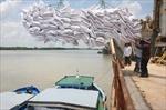 Giá gạo và cà phê Việt Nam tăng, giá đậu tương Mỹ biến động trái chiều