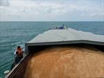 Cảnh sát biển bắt giữ tàu chở 200 tấn đường cát không giấy tờ