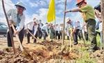 Thủ tướng gửi thư khen tỉnh Bến Tre hưởng ứng sáng kiến trồng cây xanh