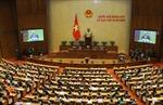 Nâng cao vai trò của đại biểu chuyên trách trong Quốc hội