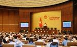 Ngày 24/7, Quốc hội tiếp tục thảo luận về kế hoạch đầu tư công trung hạn và công tác thực hành tiết kiệm, chống lãng phí