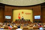 Ngày 26/10, Quốc hội thảo luận về dự án Luật Cảnh sát cơ động và dự án Luật sửa đổi, bổ sung một số điều của Luật Sở hữu trí tuệ