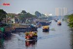 Nhộn nhịp chợ hoa Tết 'trên bến dưới thuyền' đầy sắc màu ở TP Hồ Chí Minh