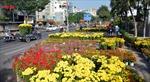 Thành phố Hồ Chí Minh 'ngập' trong sắc hoa ngày 29 Tết