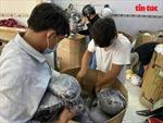 Thu giữ gần 2.000 mũ bảo hiểm giả nhãn hiệu Nón Sơn