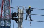 TP Hồ Chí Minh đảm bảo an toàn điện cho người dân trong mùa mưa bão