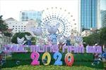 TP Hồ Chí Minh: Gấp rút thi công đường hoa Tết Canh Tý