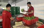 Ứng dụng công nghệ cao vào sản xuất nông nghiệp tại TP Hồ Chí Minh