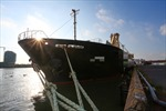 TP Hồ Chí Minh kiểm soát nguy cơ lây nhiễm COVID-19 tại các cảng hàng hải