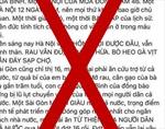 TP Hồ Chí Minhgửi giấy mời chủ tài khoản facebook 'Hằng Nguyễn' lên làm việc