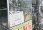 TP Hồ Chí Minh: Kiến nghị cho phép dịch vụ ăn uống được phục vụ tại chỗ