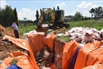 Huy động mọi phương tiện phòng chống dịch tả lợn châu Phi