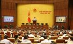 Bên lề Quốc hội: Cần sửa đổi nhiều nội dung của dự thảo Luật Quản lý thuế