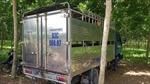 Xe tải chở hơn 2 tấn lợn không giấy tờ từ vùng dịch đi tiêu thụ k