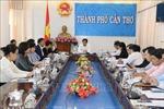 Đoàn khảo sát JICA khảo sát lĩnh vực nông nghiệp tại Cần Thơ
