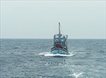Đầu tư phát triển nghề khai cá xa bờ