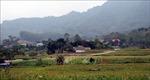 Xuân về trên quê hương cách mạng Kim Bình