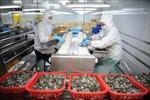 Phát triển ngành thủy sản sau dịch COVID-19 - Bài cuối: Tạo chuyển biến mạnh thu hút đầu tư
