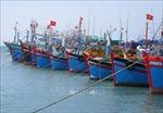 Khắc phục 'thẻ vàng'IUU: Kiểm soát chặt hoạt động tàu cá