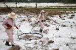 Thúc đẩy hợp tác để xử lý bom mìn ở Quảng Trị hiệu quả, bền vững