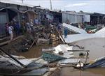 Sạt lở đất gây thiệt hại 14 nhà dân tại Năm Căn