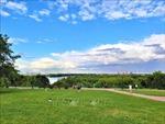 Bảo vệ môi trường: Bất ngờ với 'thành phố xanh Moskva'