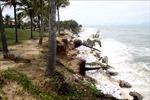 Quảng Nam khẩn trương khắc phục hậu quả bão số 5