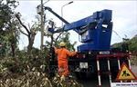 Thừa Thiên - Huế huy động toàn lực khắc phục sự cố lưới điện sau bão số 5