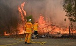Cảnh báo nguy cơ thiên tai khốc liệt tại Australia