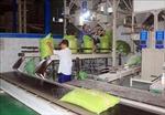 Kim ngạch xuất khẩu hàng hóa cả nước 10 tháng tăng 4,7%