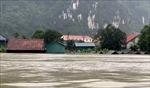 Quảng Bình: Nước Sông Gianh lên cao, hàng vạn ngôi nhà bị ngập sâu