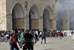 Liên hợp quốc quan ngại sâu sắc về bạo lực leo thang giữa Israel và Palestine