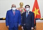 Thúc đẩy cung cấp, chuyển giao công nghệ sản xuất vaccine giữa Việt Nam và Cuba
