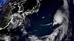 Olympic Tokyo 2020: Thêm một môn bị thay đổi lịch thi đấu vì bão Nepartak