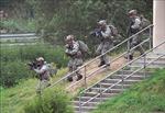 Quân đội Hàn-Mỹ nhiều khả năng vẫn tập trận chung, nhưng thu hẹp quy mô