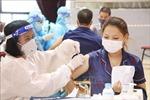 Phú Thọ đảm bảo cung ứng đủ lương thực, thực phẩm cho nhân dân