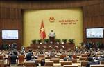 Quốc hội tiếp tục thảo luận trực tuyến về công tác tư pháp, phòng chống tham nhũng