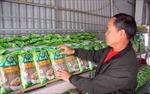 Lai Châu: Phát huy vai trò người có uy tín trong cộng đồng