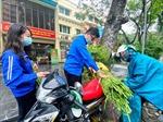 Tuổi trẻ Thủ đô tiếp tục giúp giải cứu hoa màu cho Hải Dương