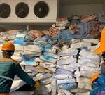 Phát hiện hơn 72 tấn lòng lợn bốc mùi không rõ nguồn gốc chờ tiêu thụ tại Hải Dương